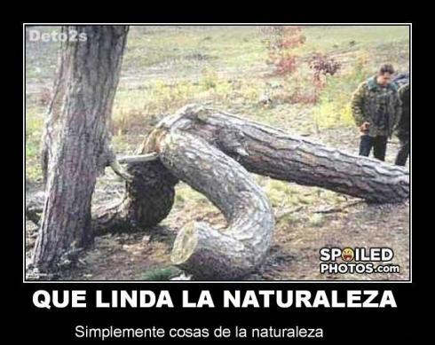naturaleza by deto2s